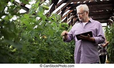 old man with tablet pc in greenhouse on farm - farming,...