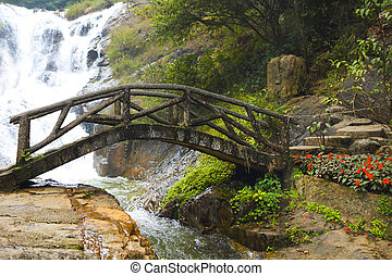 Bridge in the mountain forest