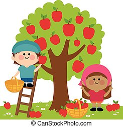 Kids picking apples - Vector Illustration of two children, a...