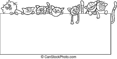 cats with frame design