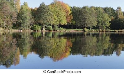 autumn landscape reflection in the