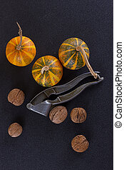 walnuts and pumpkin on rustic background - walnuts and...