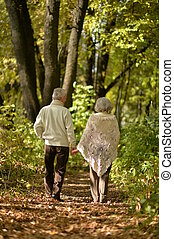 Elderly couple goes away through the alley in autumn park -...