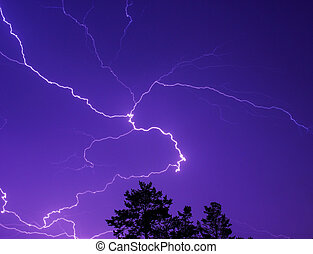 Lightning in the night sky above the treetops