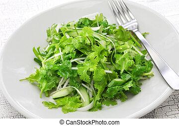 cilantro salad, coriander salad, close up