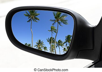 rearview car driving mirror tropical palm trees - rearview...