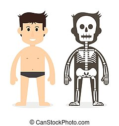 human body and skeletal system flat design