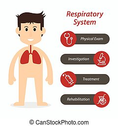 Respiratory system and medical line icon