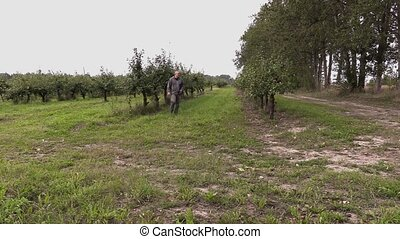 Agronomist check out apple trees and writes