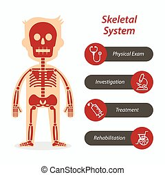 Skeletal system and medical line icon