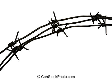 Spikes - Image of iron barbwire with twisted thorny elements...