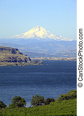 Mt. Hood Oregon. - Mount & the Columbia Gorge valley from...