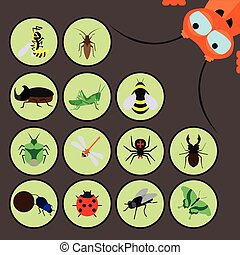 Set of various insects