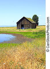 Old shack and a pond - An old shack and a pond in eastern...