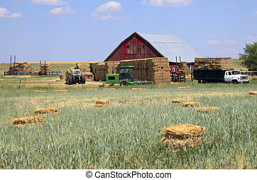 Country farm, east Washington state - tractors and farm...