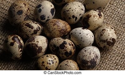 Quail eggs on a plate. Close up. Rotating - Color of the...