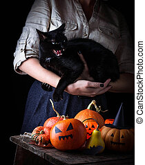 Halloween pumpkin and woman with furious black cat....