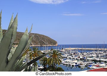 Moraira marina port view from agave in Alicante province...