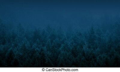 Forest Swaying In Wind At Night - Misty forest with trees...