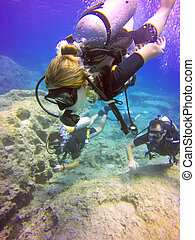 Scuba divers - Young scuba divers, woman, man swimming...