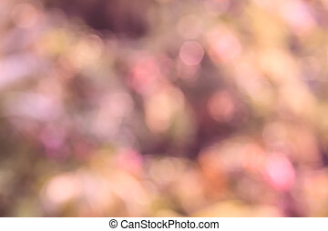 Pink and red bokeh background, abstract colorful defocused...