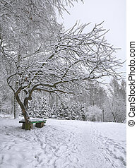 Park bench and trees covered by heavy snow