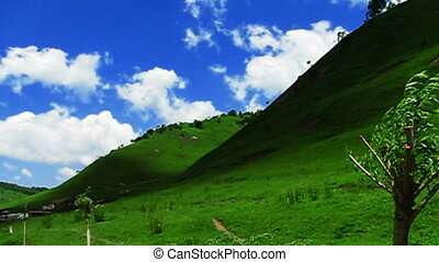 clouds and meadow - white clouds over the tableland meadow,...