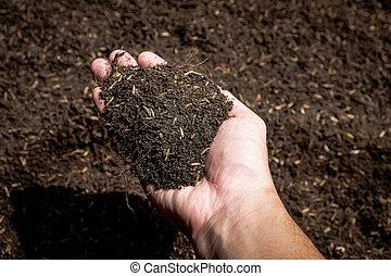 土壌, 農業, フィールド, 保有物, 手