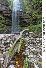 Henrhyd Falls on the Nant Lech river, Brecon Beacons, South...