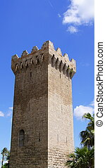 Tower Porto Pi Mallorca - Tower in Porto Pi in Palma de...