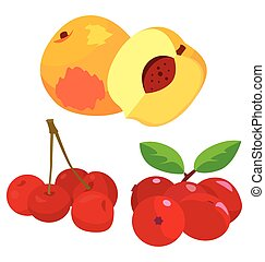 cranberry, cherry, peach - healthy fruit