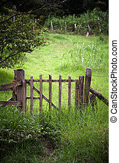 Scenic Gate in Costa Rica - Scenic gate in Costa Rica near...