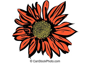 beautiful autumn flower chrysanthemum - vector image of a...