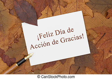 Happy Thanksgiving Greeting Card in Spanish