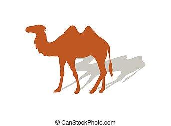 Transportation Goods by Camel. Worldwide Warehouse