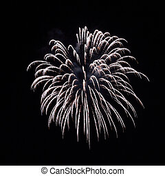 Fireworks - A delicate bursts of palm-like fireworks in the...
