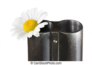 camomile in a trunk of a fowling piece - Flower of a...