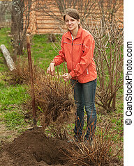 woman relocation bush sprouts - young woman relocation bush...