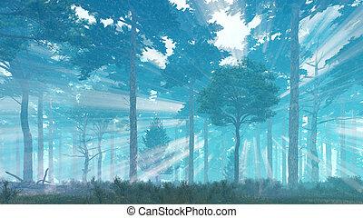 Sunbeams in misty pine forest