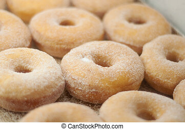yummy donuts at a bakery - a tray of sugar dusted donuts
