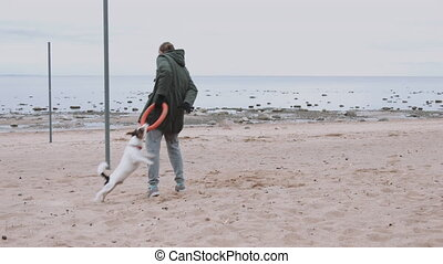 Woman playing with dog on the sea shore - Young woman...