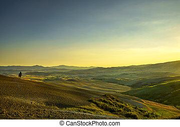 Tuscany Maremma sunset. Trees, farmlands, hills and fields. Italy.