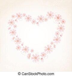 Aster daisy flowers heart shape love concept - Aster daisy...
