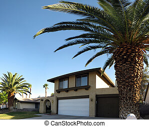 Las Vegas Home with large royal palms and three car garage....