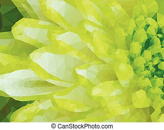 Detail of Lime Green Chrysanthemum Flower Square Backround -...