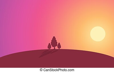 Landscape tree on hill at sunset silhouette