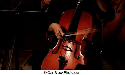 violoncello in orchestra