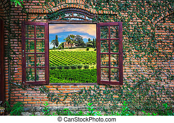 View of the Italian vineyards from an old window