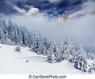 Dramatic wintry landscape - Majestic winter landscape...