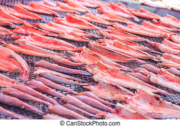 Dried fish,salted fish.Food preservation